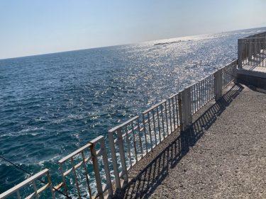 ベールの釣り日誌#03~江の島での海釣り~